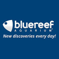Blue Reef Aquarium Hastings Vouchers