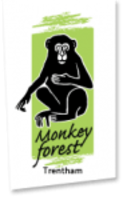 Trentham Monkey Forest Vouchers